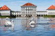 Swans in front of Nymphenburg Castle in Munich