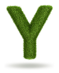 Natural grass letter Y