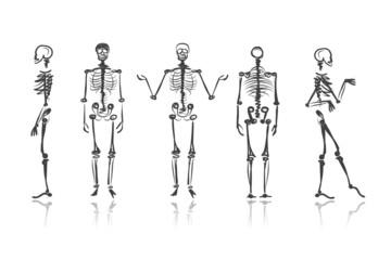 Skeleton sketches for your design