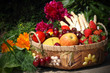Korb mit Obst und Gemüse vor Pfingstrosen
