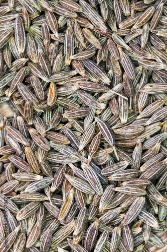 background from dried cumin seeds