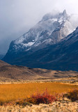 Autumn in Patagonia. Torres del Paine National Park Chile