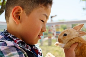 ウサギと一緒 Happy with a Baby Rabit.