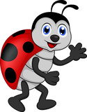funny lady bug cartoon