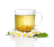 Fresh herbal tea with Bellis prennis