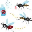 蚊と虫除けスプレー