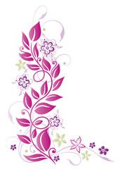 Blätter, Ranke, Blumen, Blüten, lila, pink, grün
