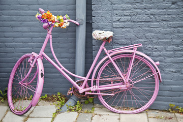 Hollandrad pink