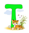 Alphabet, T Tiger