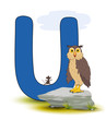 Alphabet, U Uhu