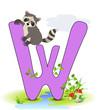 Alphabet, W Waschbär