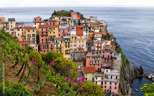 Beautiful Cinque terre village Manarola.