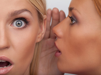 It is unbelievable! Close-up of two beautiful young women gossip