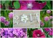 composition florale, 2014