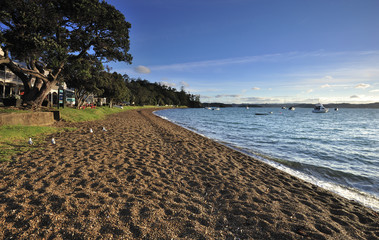 Beach near Russell, Bay of Islands