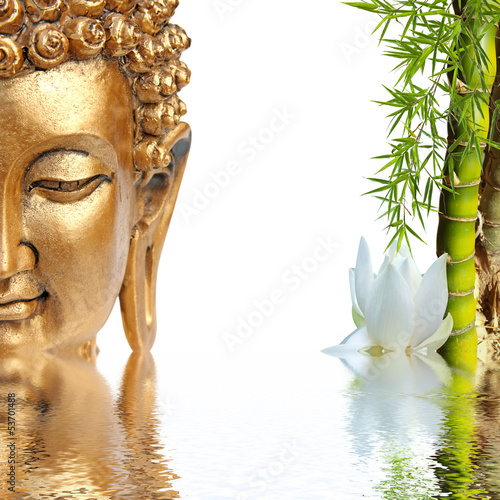 In de dag Water planten Bouddha doré, bambou et fleur blanche de lotus