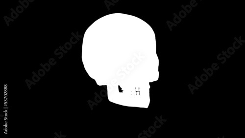Human skull in loop rotation with luma key included