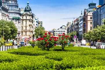 Wenzelsplatz Prag und Rosen