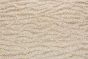 yellow sea beach or Desert sand wave for texture and background