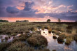 warm calm sunset over swamps in Drenthe