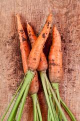 fresh carrots bunch