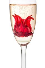 Sekt Cocktail mit Hibiskusblüte