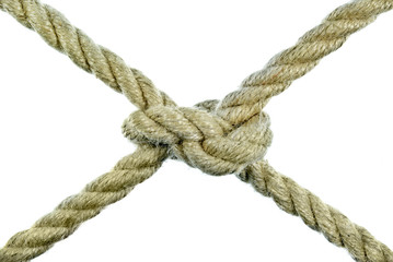The rope tied in a knot on a white background.
