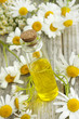 Chamomile essence and flowers