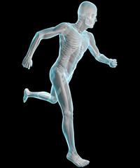 Uomo che corre ai raggi X