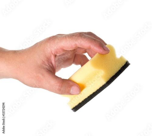 sponge in a hand