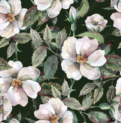 Wild Roses Seamless Pattern - 53725638