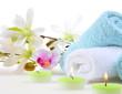 Wellness Magnolie Kerzen Grün Blau