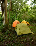 Three tents on a campsite in the woods poster