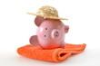 Sparschwein Handtuch Sonnenhut