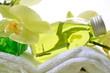 Wellness Orchideen Rosa Badetuch