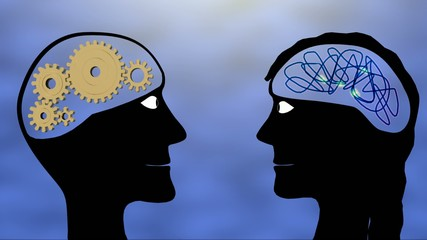 Difference between male and female brains