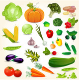Set of fresh vegetables for your design