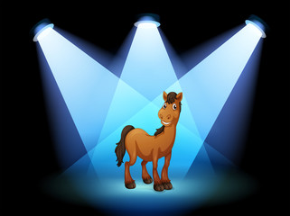A horse at the stage under the spotlights
