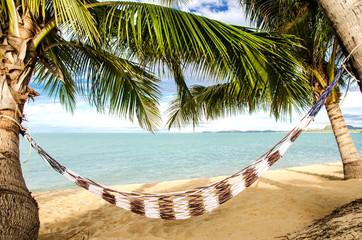 Traumstrand: Hängematte unter Palmen am Meer