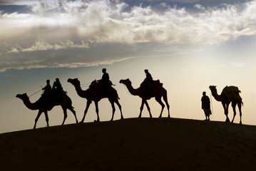 Camel riding in Thar Desert