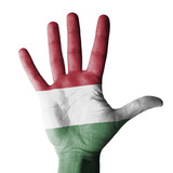 Hand raised with Hungary flag painted - isolated