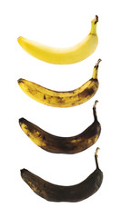 Spotless banana in a process of decompose