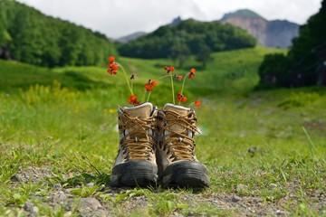山と草原とブーツのある風景