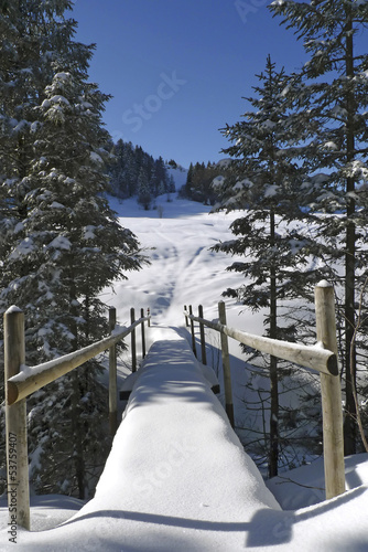 canvas print picture Brücke in Winterlandschaft