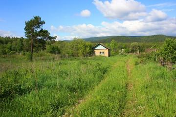 Проселочная дорога, заросшая травой