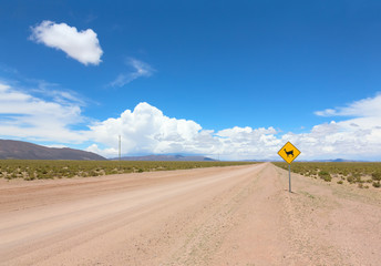 Road with warning sign of the appearance of llamas