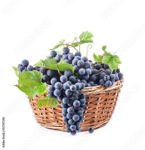 Grapes in wicker basket, Isolated on white background