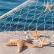 Seesterne, Sommerurlaub, Urlaubserinnerungen