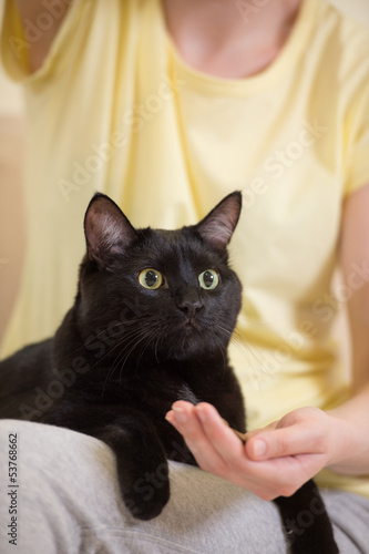 Unrecognizable woman feeding her black cat at home