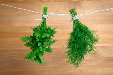 Fresh herbs: parsley and dill, hanging over wooden background